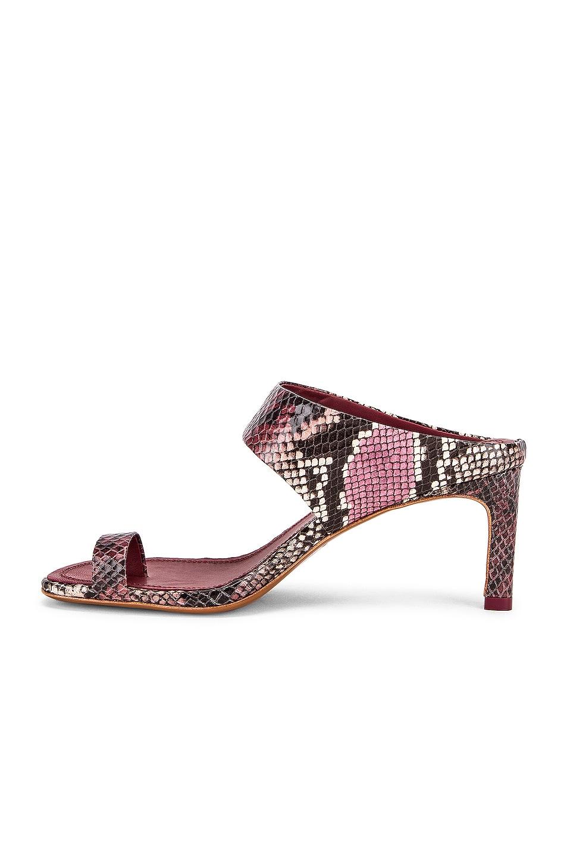 Image 5 of Zimmermann Strap Sandal in Burgundy Python