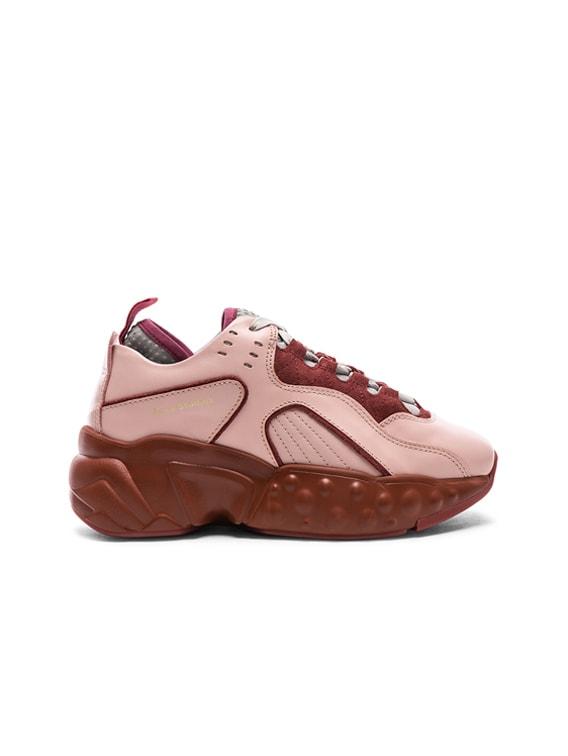 Acne Studios Leather Manhattan Sneakers