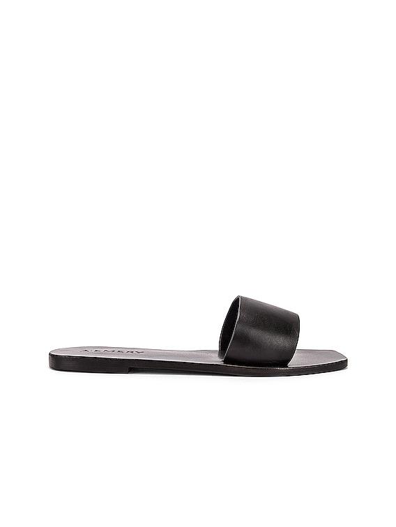 Zadie Sandal in Black
