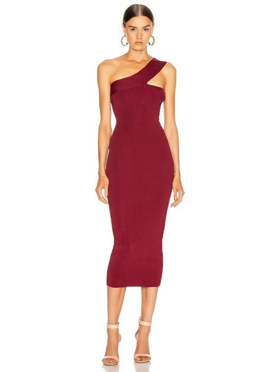 Hanson Dress in Garnet