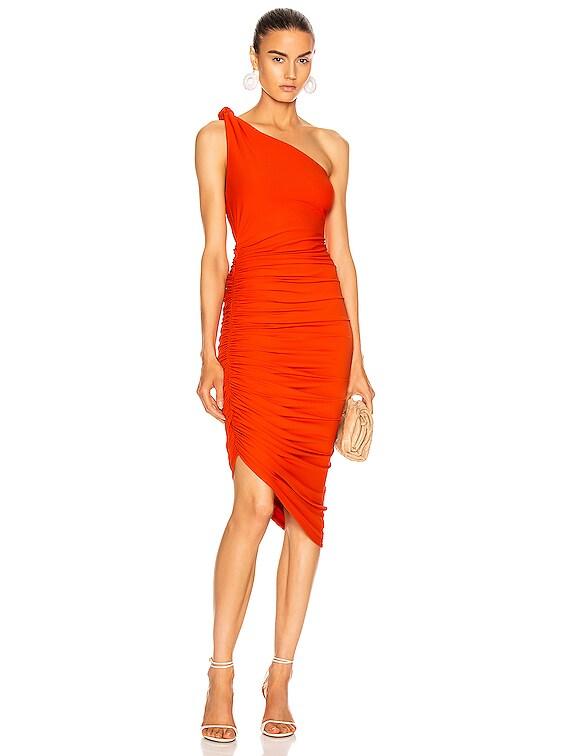 Celeste Dress in Blood Orange