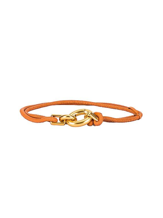 Skinny Belt in Clay & Gold
