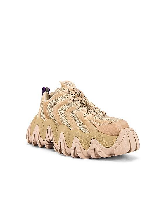 Halo Suede Sneaker in Dune