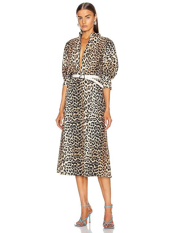 Printed Cotton Poplin Dress in Leopard