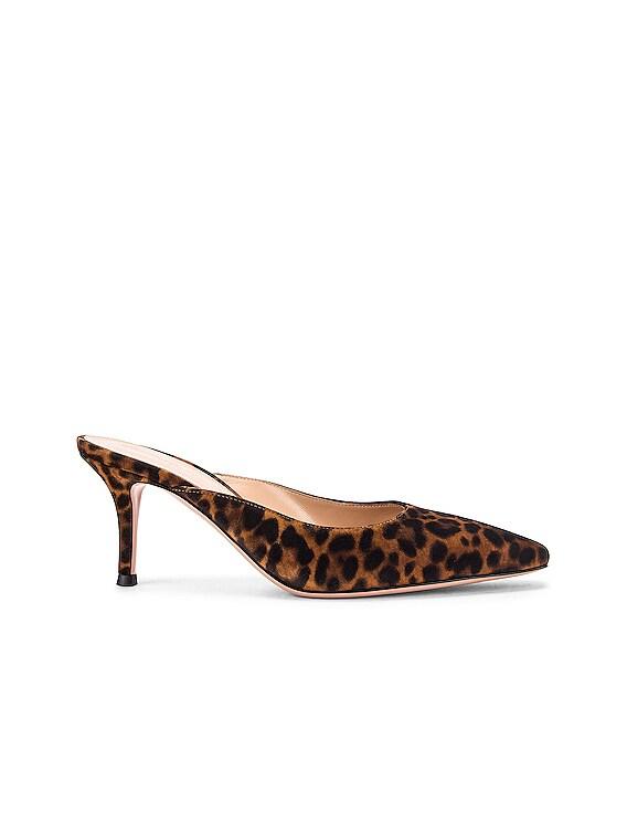 Kitten Heels in Almond Leopard Print