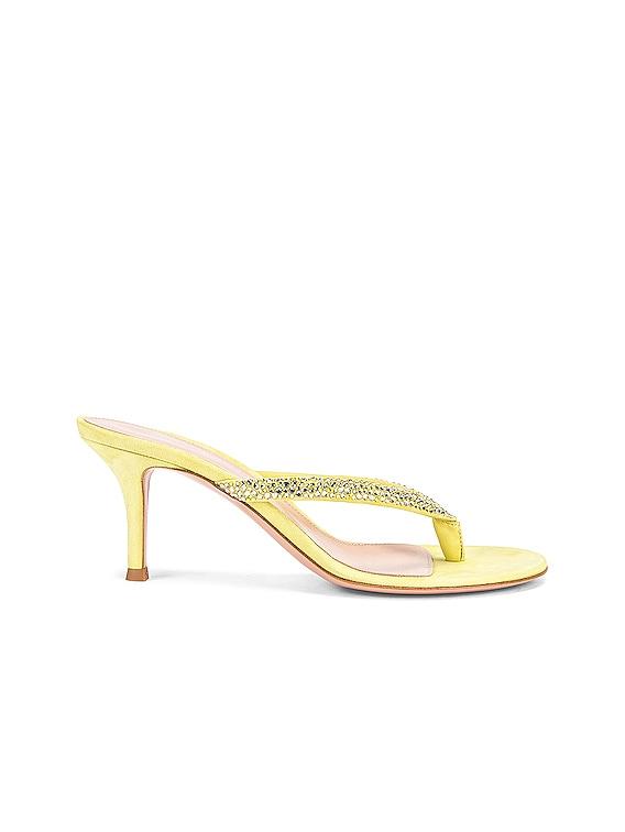 Diva Flip Flop Sandals in Lemonade