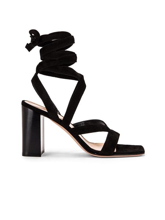 Camoscio Strappy Sandals in Black