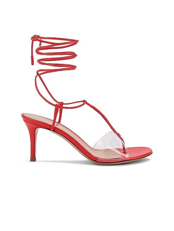 Plexi Strappy Sandals in California & Transparent