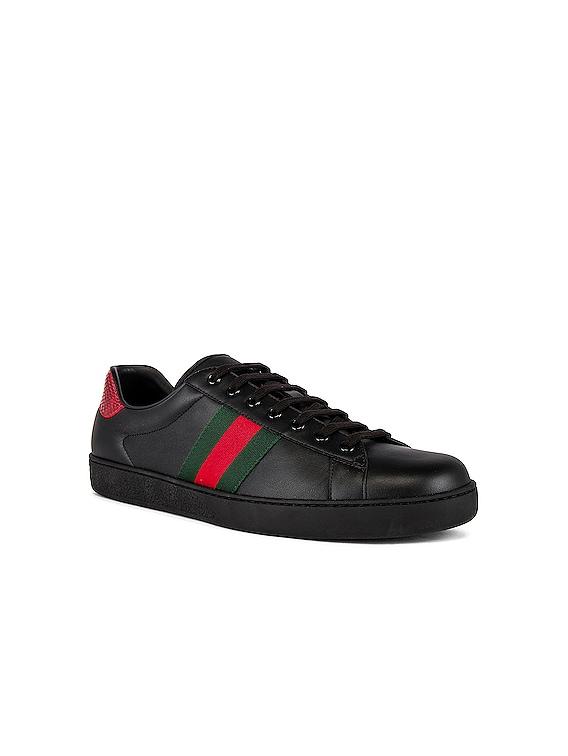 New Ace Sneaker in Black