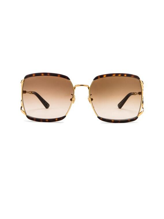 Oversized Square Sunglasses in Dark Havana & Brown