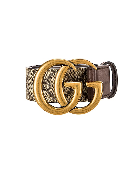 GG Belt in Beige Ebony