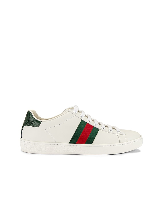 New Ace Basic Sneakers in White & Green