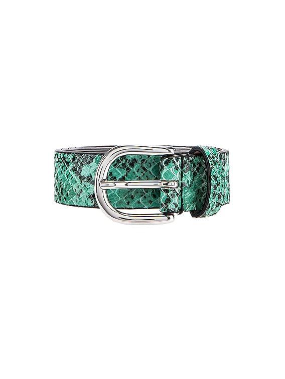 Zap Belt in Water Green