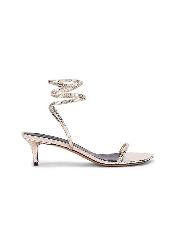 Aridee Sandal in Gold