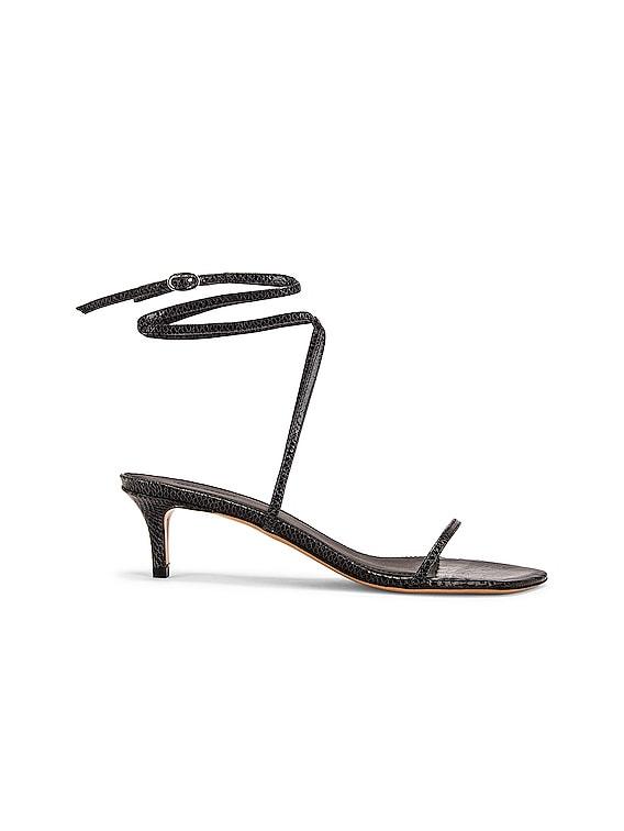 Aridee Sandal in Black