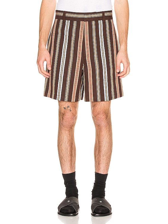 Auriel Shorts in Open Brown
