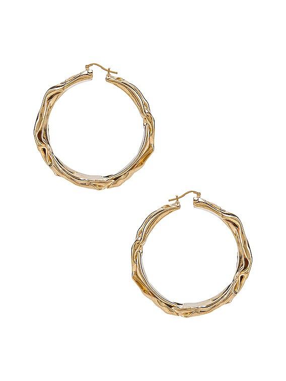 Flattened Earrings in Gold