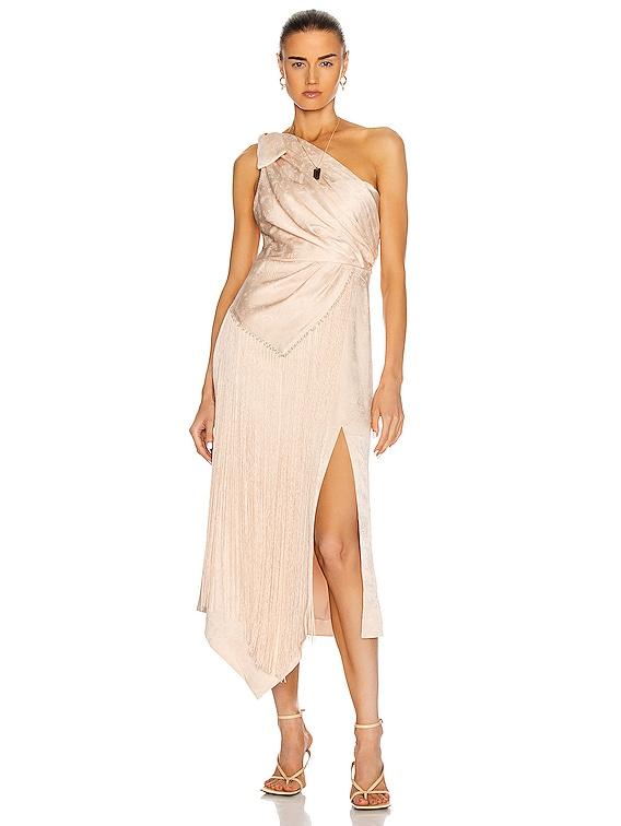 Wren One Shoulder Dress in Champagne