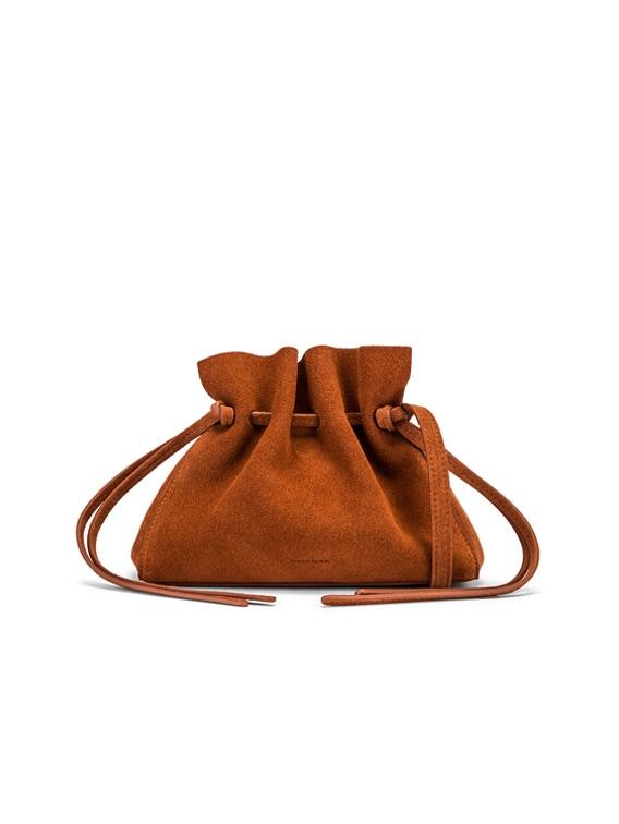 Mini Protea Bag in Rust