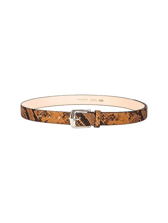Leather Python Belt in Brown & Black