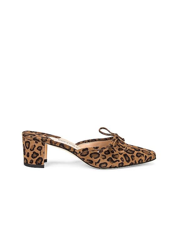 50 Balle Mule in Leopard
