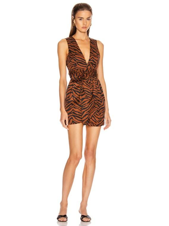 Jones Heavy Canvas Print Dress in Copper Zebra