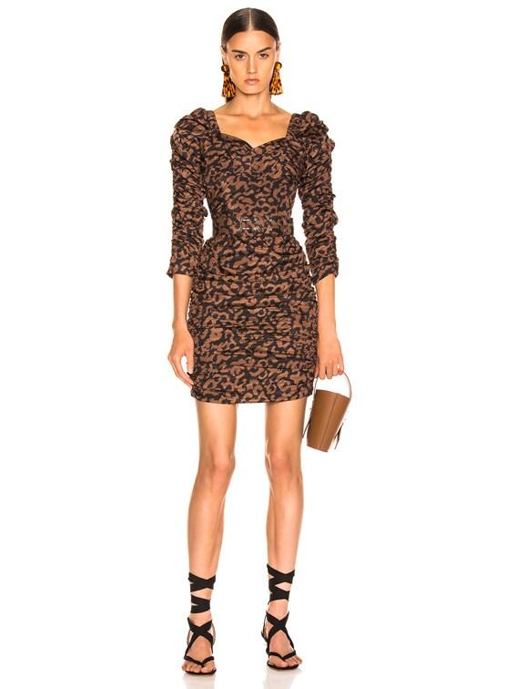 Ruched Mini Dress in Black Leopard