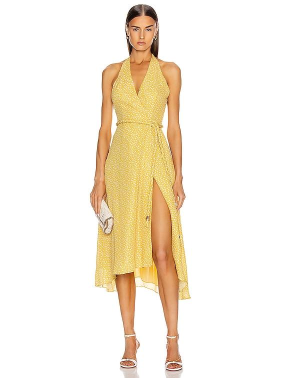 Cynthia Dress in Custard Vine Ditsy
