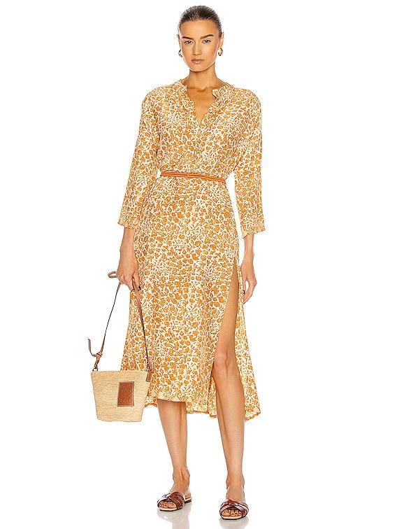 Isobel Dress in Ivy Cinnamon Dark