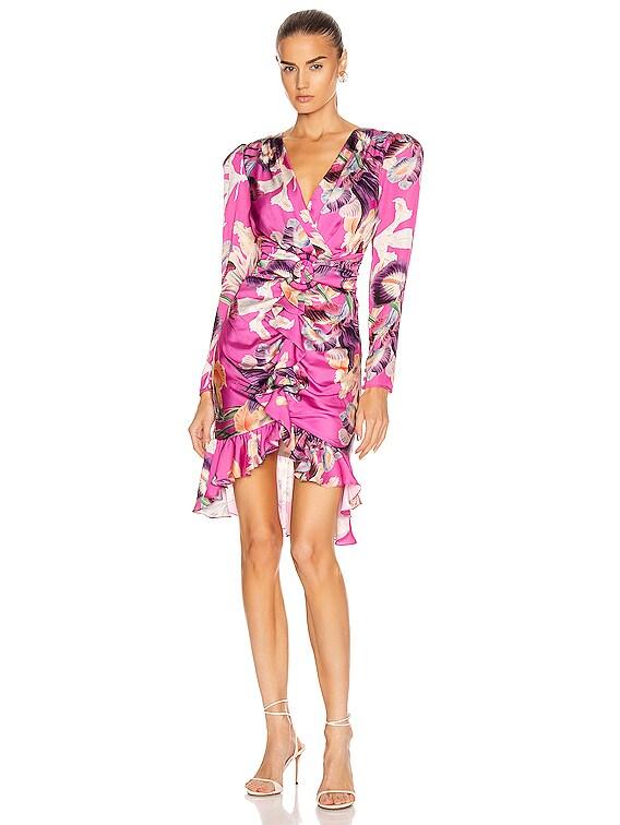 Grace Print Knee Length Dress in Fuchsia