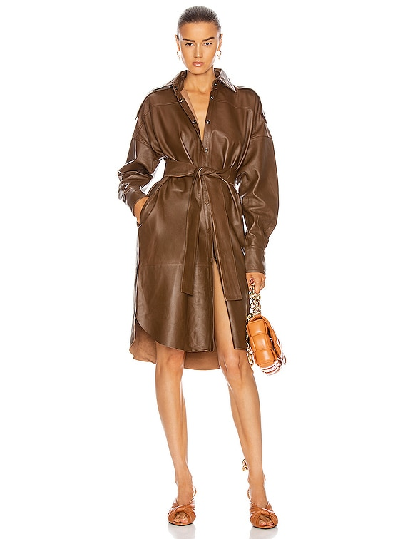 Lavare Long Sleeve Dress Leather Dress in Bison