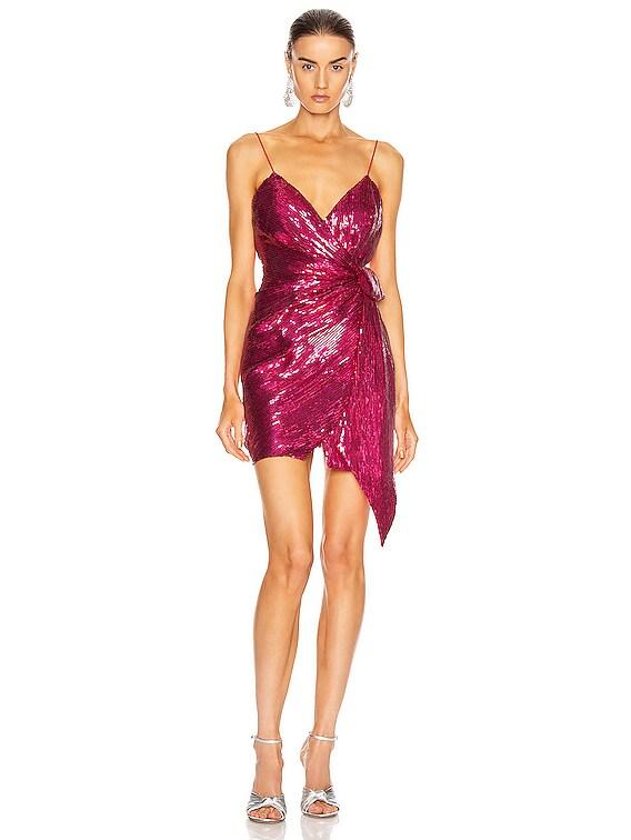 for FWRD Mary Dress in Fuchsia