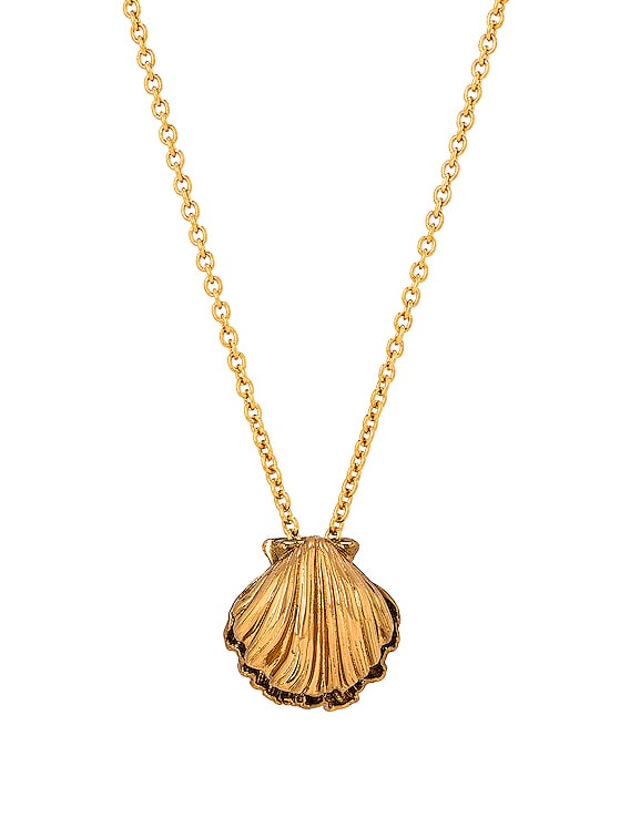 Seashell Charm Long Necklace in Laiton Gold & Amber Gold