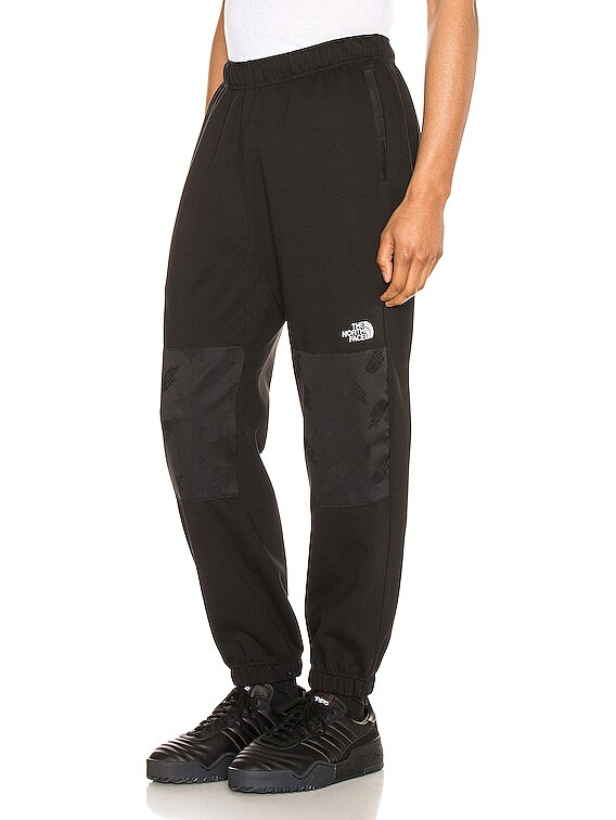 Graphic Collection Fleece Pant in TNF Black
