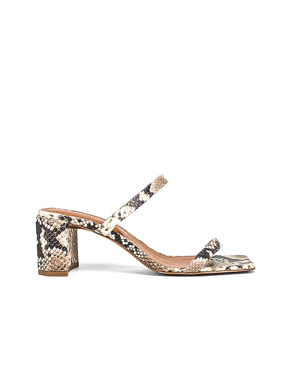 Tanya Sandal in Snake Print Leather