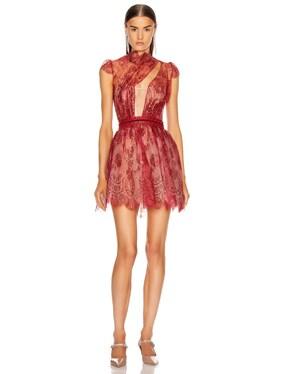 French Lace Mini Dress