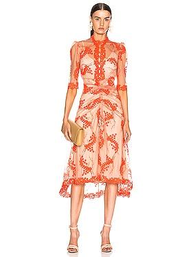 Honeymoon Midi Dress
