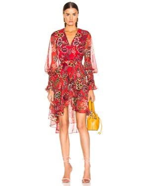 Sidony Dress