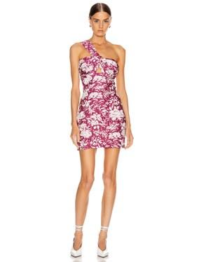 Livie Dress