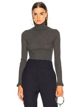 Fine Rib Wool Knit Turtleneck Sweater