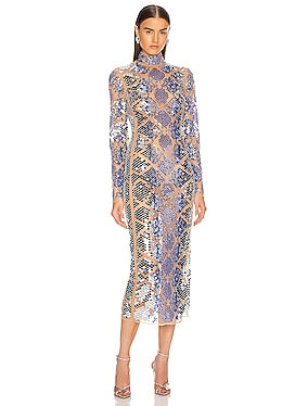 Plexi Embroidered Long Sleeve Net Dress