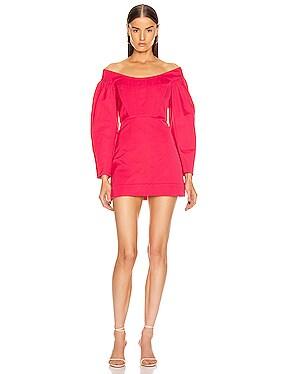 Cinched Ruffle Mini Dress