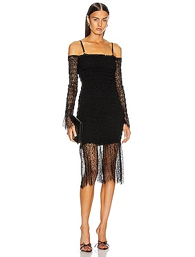 Shirred Elapid Lace Dress