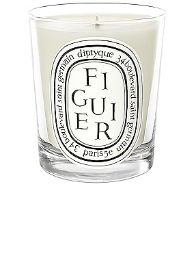 Figuier Scented Candle