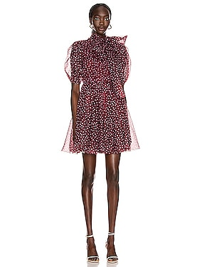 Tie Polka Dot Mini Dress