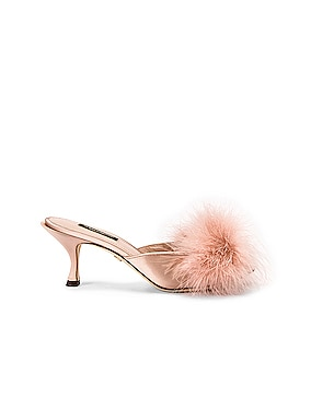 Feather Mules