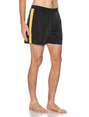 Pool Shark Swim Short