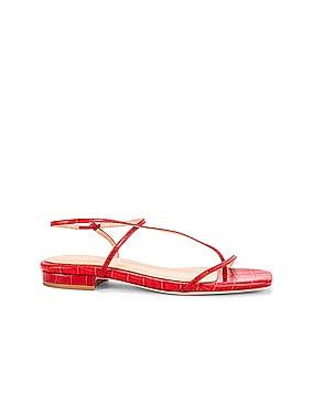 1.2 Sandal