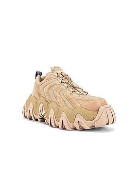 Halo Suede Sneaker