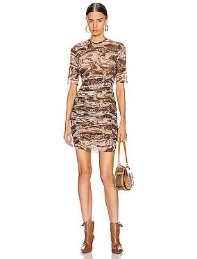 Printed Mesh Mini Dress
